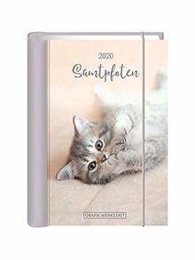 """Terminplaner 2020 """"Samtpfoten"""": Terminplaner Hardcover"""