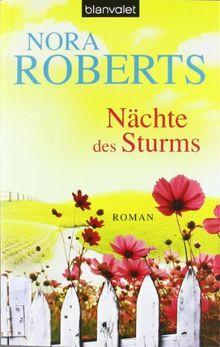 Nächte des Sturms: Roman