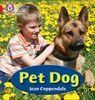 PET DOG: Band 02a/Red a (Collins Big Cat Phonics)