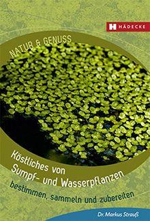 Köstliches von Sumpf- und Wasserpflanzen: bestimmen, sammeln und zubereiten