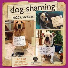 DOG SHAMING 2020 WALL CAL