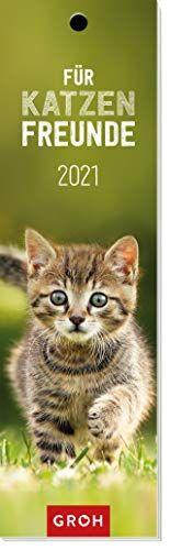 Für Katzenfreunde 2021: Lesezeichenkalender