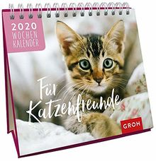 Für Katzenfreunde 2020