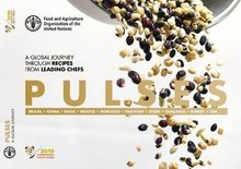 Pulses (Recipes) (Spanish)