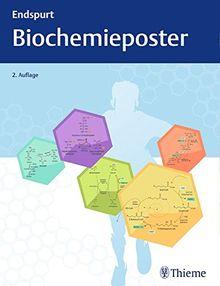 Endspurt Biochemieposter