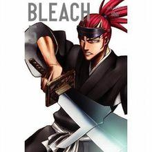 Bleach - Vol. 5, Episoden 17-20
