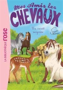 Mes Amis les chevaux 28 - Un invité surprise (Mes amis les chevaux - Sophie Thalmann (28), Band 28)