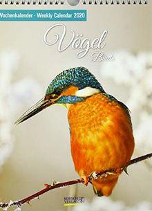Vögel 2020: Foto-Wochenkalender