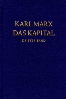Das Kapital. Kritik der politischen Ökonomie: Das Kapital, Bd.3, Der Gesamtprozeß der kapitalistischen Produktion: Der Gesamtprozess der kapitalistischen Produktion