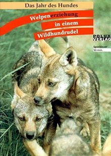 Welpenerziehung in einem Wildhundrudel: Das Jahr des Hundes