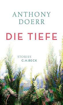 Die Tiefe: Stories