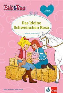 Bibi und Tina - Thema 11: Lesen lernen - 1. Klasse ab 6 Jahren (Bibi und Tina - Lesen lernen mit dem Schulbuchprofi)