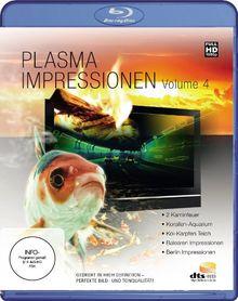 Plasma Impressionen HD Vol. 4 [Blu-ray]