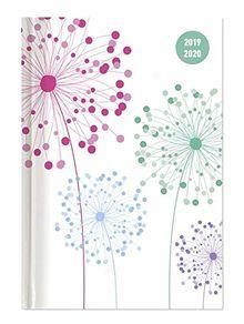 Collegetimer Blowballs 2019 2020 Pusteblume Schulerkalender A6 10 X 15 Weekly 224 Seiten Terminplaner Von Alpha Edition