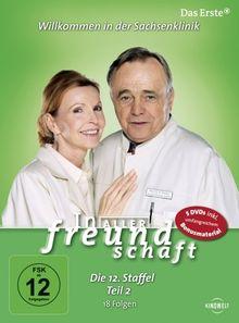 In aller Freundschaft - Die 12. Staffel, Teil 2, 18 Folgen [5 DVDs]