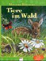 Tiere im Wald: Mein erstes Bilderwissen