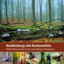 Mecklenburgs alte Buchenwälder: UNESCO-Weltnaturerbe Serrahn und Feldberger Schutzgebiete