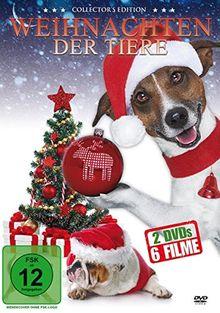 Weihnachten der Tiere [2 DVDs]