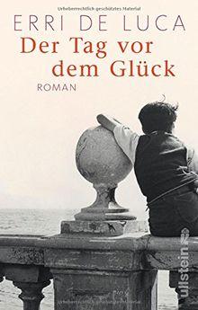 Der Tag vor dem Glück: Roman