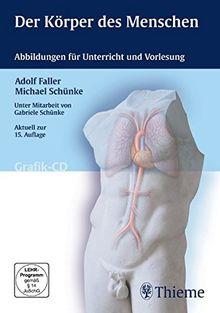 Der Körper des Menschen (Grafik-CD)für Win Apple Mac OS X; Vista; XP; 2000; ME; 9x: Abbildungen für Unterricht und Vorlesung