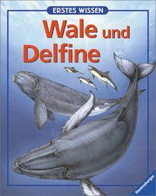 Erstes Wissen, Wale und Delfine