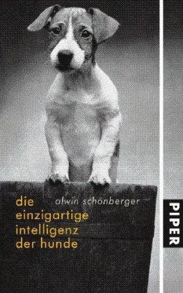 Intelligenz Hunde