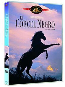 El Corcel Negro (Import Dvd) (2003) Mickey Rooney; Kelly Reno; Teri Garr; Clar