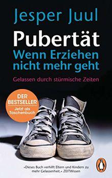 Pubertät – wenn Erziehen nicht mehr geht: Gelassen durch stürmische Zeiten