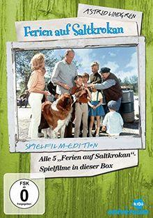 Astrid Lindgren: Ferien auf Saltkrokan [5 DVDs]