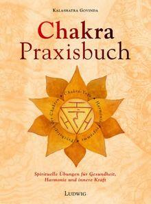 Das Chakra-Praxisbuch