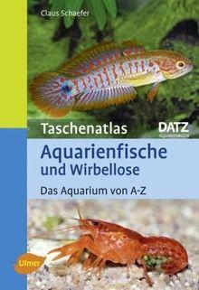 Taschenatlas Aquarienfische und Wirbellose: Das Aquarium von A-Z