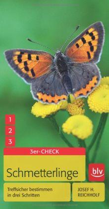 Schmetterlinge: Treffsicher bestimmen in drei Schritten