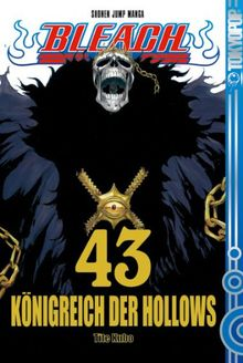 Bleach 43: Königreich der Hollows