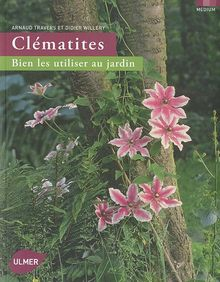 Clématites : Bien les utiliser au jardin