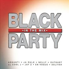 Black in the Mix Party