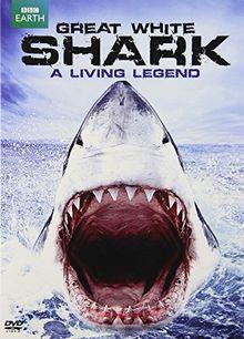 Great White Shark - A Living Legend / (Ecoa) [DVD] [Region 1] [NTSC] [US Import]