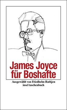 James Joyce für Boshafte (insel taschenbuch)