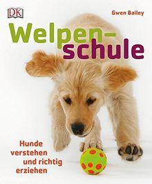 Welpenschule: Hunde verstehen und richtig erziehen
