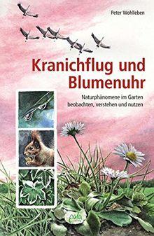 Kranichflug und Blumenuhr: Naturphänomene im Garten beobachten, verstehen und nutzen