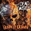 Burn it Down - Red/Black Vinyl [Vinyl LP]