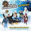 Björns Bärenbande ... im Winter!