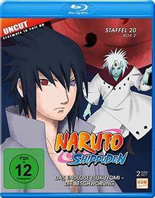 Naruto Shippuden - Das endlose Tsukuyomi - Die Beschwörung - Staffel 20.2: Folgen 642-651 [Blu-ray]