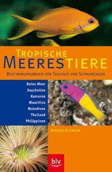 Tropische Meerestiere. Bestimmungsbuch für Taucher und Schnorchler: Rotes Meer, Seychellen, Komoren, Mauritius, Malediven, Thailand