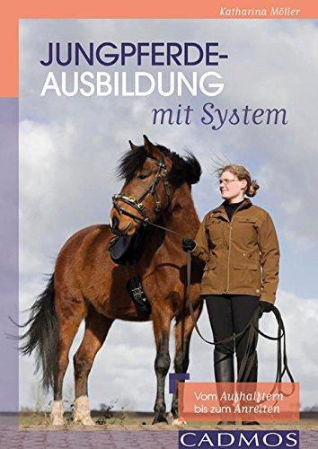 Jungpferdeausbildung Mit System Vom Aufhalftern Bis Zum Anreiten Von Katharina Moller