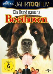 Ein Hund namens Beethoven (Jahr100Film)