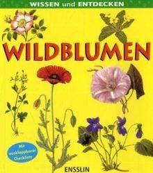 Wissen und entdecken. Wildblumen