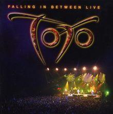 Falling in Between Live