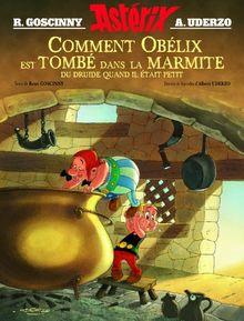 Comment Obelix est Tombe dans la Marmite du Druide Quand Il Etait Peti