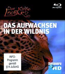 Discovery HD: Austin Stevens - Der kleine Leopard Das Aufwachsen in der Wildnis [Blu-ray]