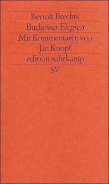 Buckower Elegien (edition suhrkamp)
